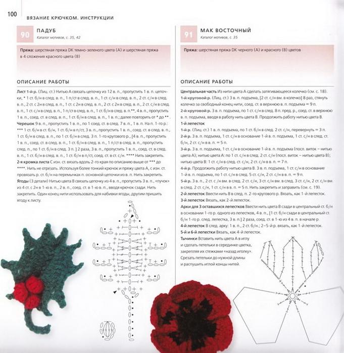 100 вязаных цветов спицами и крючком (97) (681x700, 288Kb)