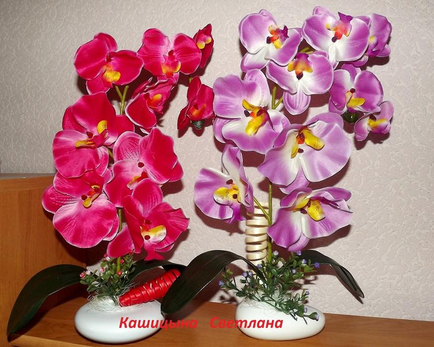 Топиарий из орхидей 5