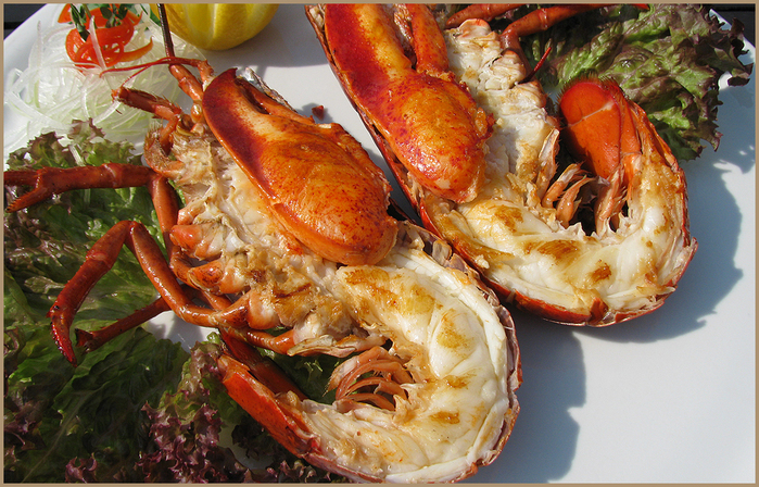 lobster_grill-xxl (700x448, 469Kb)