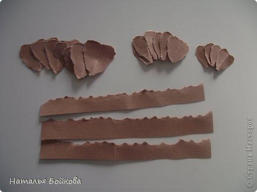 Винтажная роза из бумаги. Мастер-класс (12) (520x390, 58Kb)