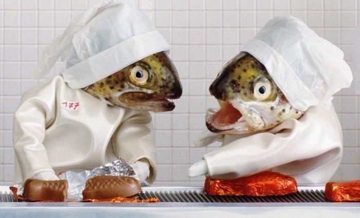 фотопроект рыбьи головы (700x425, 134Kb)