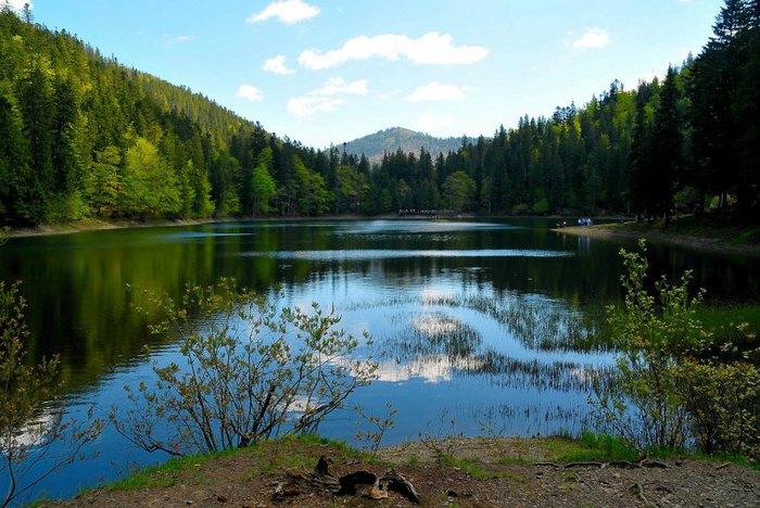 Синевир - сказочное озеро украинских Карпат-1 (800x568, 96Kb)