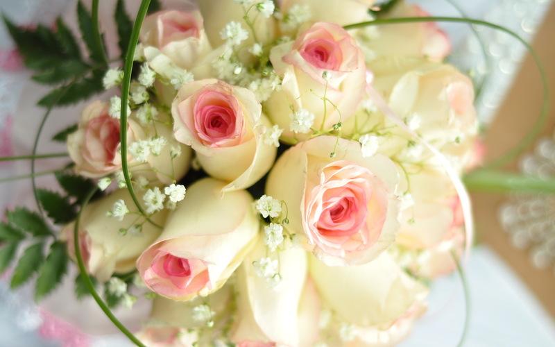 Картинки цветы hd качества 3