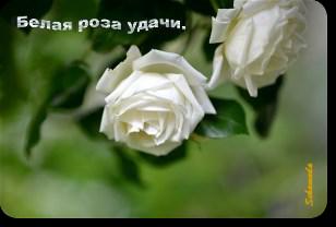 title576971516 (308x208, 92Kb)