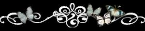 3676362_0_7f42d_e83ae3c9_M (300x64, 31Kb)