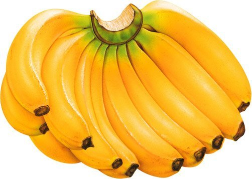 банан 1 (502x357, 162Kb)