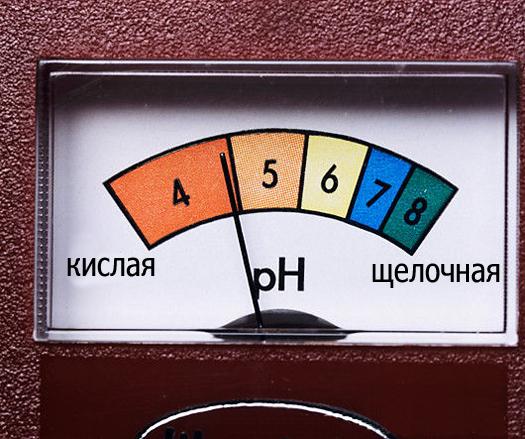kislotnost-pochvy (525x439, 213Kb)
