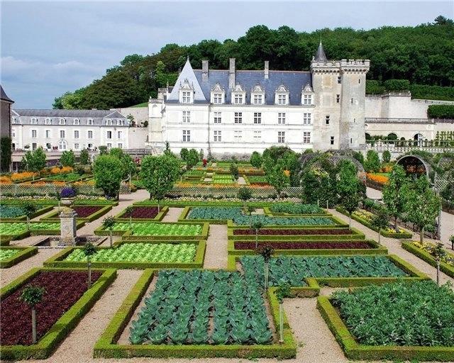 Сады замка Вилландри (640x512, 273Kb)