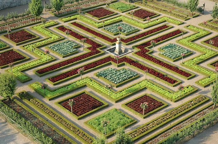 Сады замка Вилландри 7 (694x461, 265Kb)