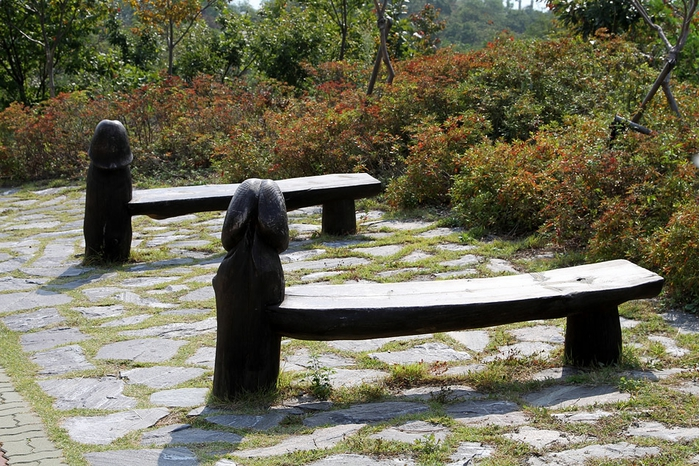 парк хэсидан южная корея фото 9 (700x466, 351Kb)