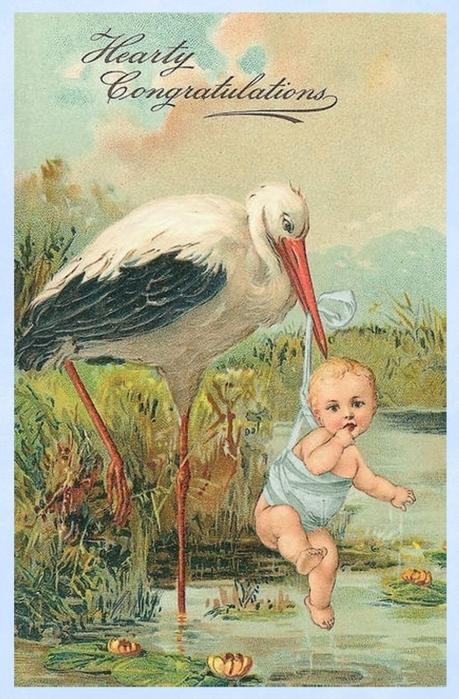 4435712_Vintage_stork_with_baby_boy_border (459x700, 281Kb)