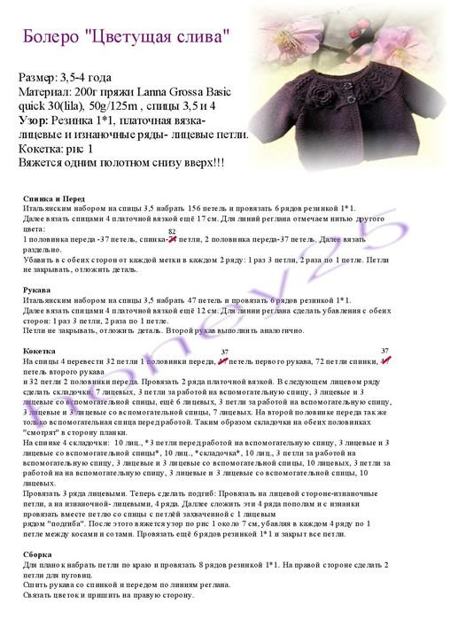 болеро цветущая слива (1) (508x700, 111Kb)