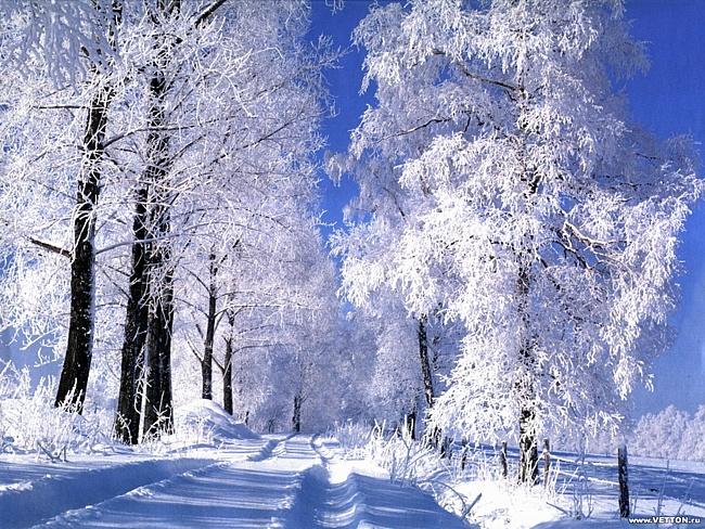 зима пришла 6