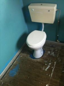 toiletghost-225x300 (225x300, 14Kb)