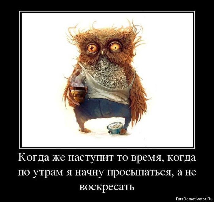 1371133534_94510442_kogda-zhe-nastupit-to-vremya-kogda-po-utram-ya-nachnu-prosyipatsya-a-ne-voskresat (700x662, 59Kb)