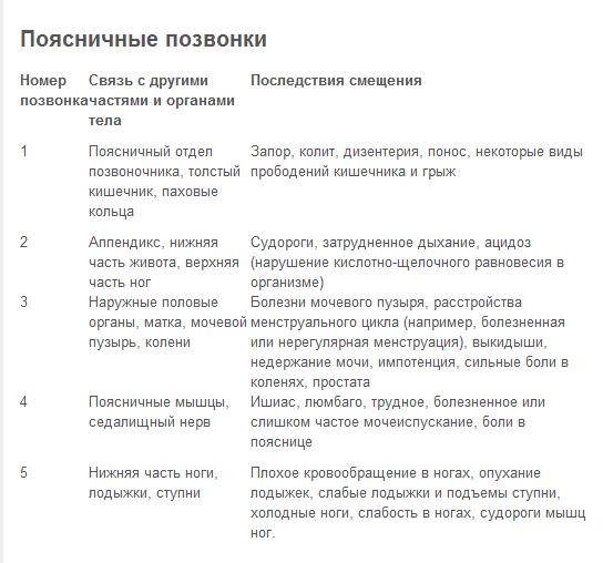 5239983_pozvonochniki_vivihi (544x508, 24Kb)