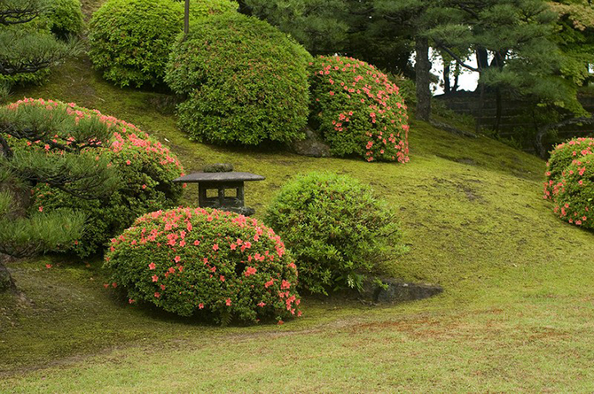 Японский замок Нидзё фото 16 (670x445, 528Kb)