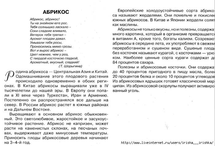 4979214_abrikos_opisanie (700x476, 274Kb)