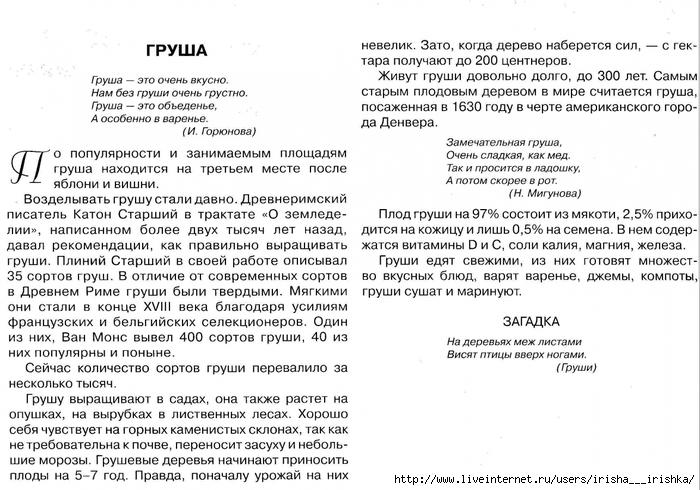 4979214_grysha_opisanie (700x490, 275Kb)