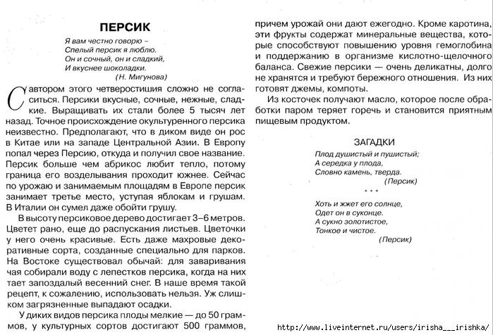 4979214_persik_opisanie (700x476, 277Kb)
