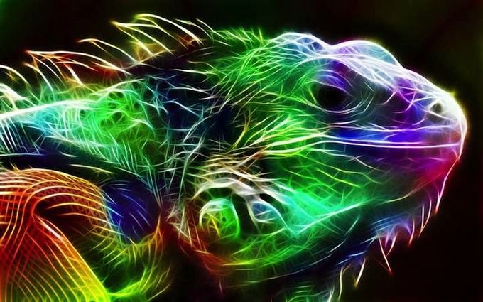 электрические картины животных 5 (680x425, 179Kb)