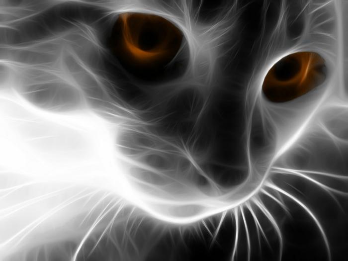 электрические картины животных 19 (700x525, 134Kb)