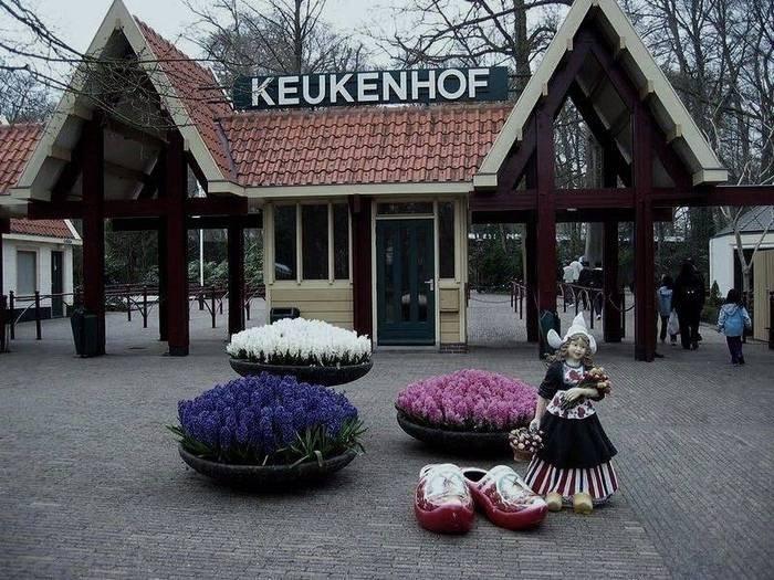 цветочный парк Кейкенхоф голландия (700x525, 265Kb)