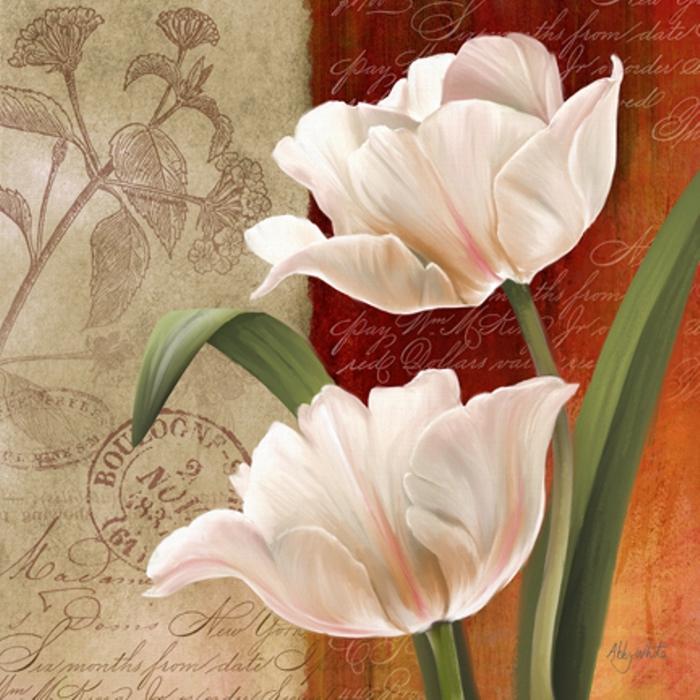 French Tulips I-72 (700x700, 297Kb)