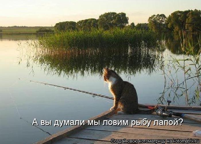 Порнушка бесплатно только русское короткие ролики 20 фотография