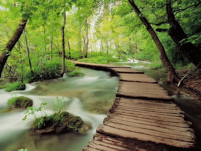 plitvice-national-park-2 (700x525, 481Kb)