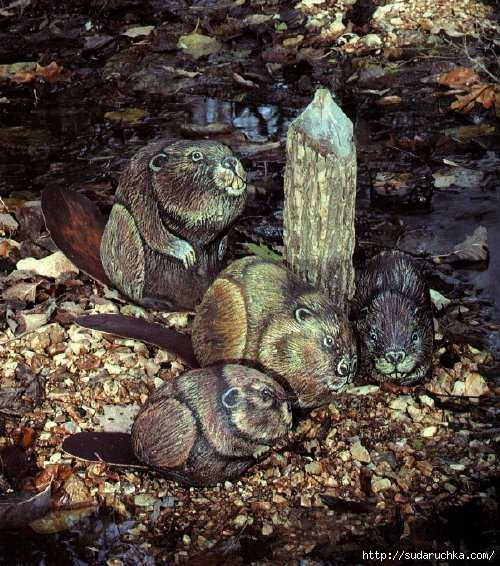 painting more animals on rocks 46 (500x566, 224Kb)