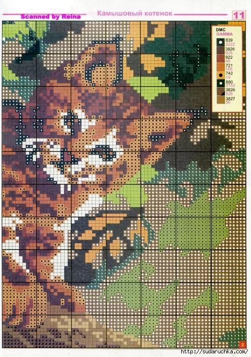 _Домашние и дикие кошки_Страница_01 (11) (493x700, 447Kb)