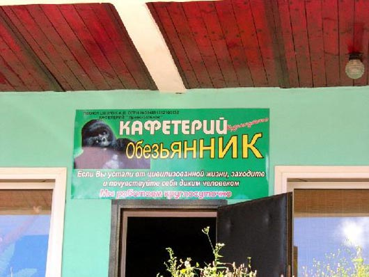 3821971_obezyannik (530x398, 39Kb)