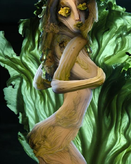 овощные картины Ю Дуоки 7 (560x700, 374Kb)