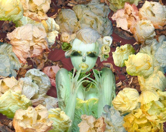 овощные картины Ю Дуоки 11 (700x560, 445Kb)