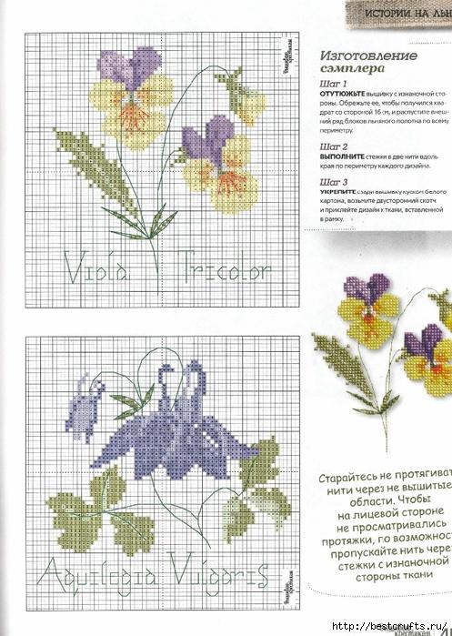 Вышиваю крестиком. Журнал со схемами (31) (497x700, 301Kb)