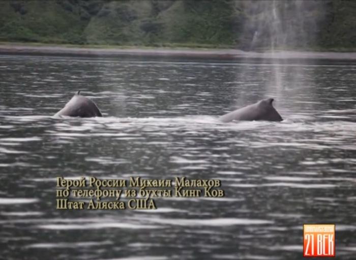 Малахов бухта (700x511, 186Kb)