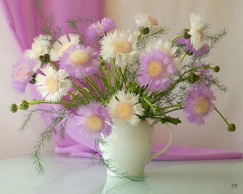 натюрморт цветы 5 (500x399, 178Kb)