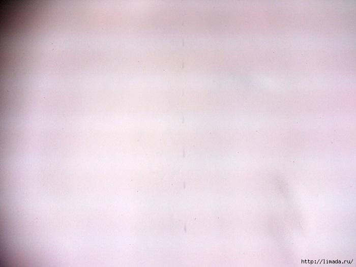 DSC_0465 (700x525, 139Kb)