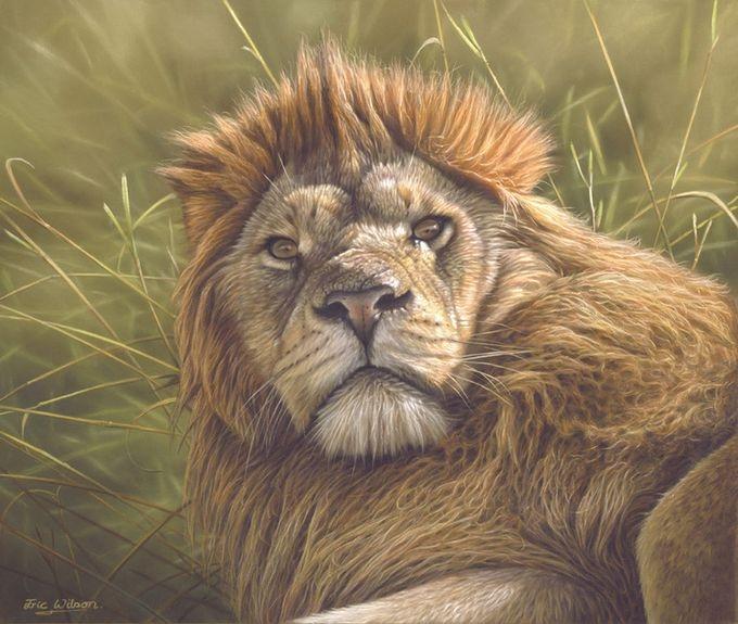 животные в картинах художников Эрик Уилсон 3 (680x575, 212Kb)