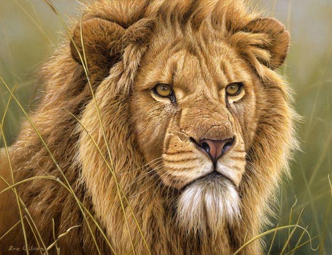 животные в картинах художников Эрик Уилсон 5 (680x524, 246Kb)