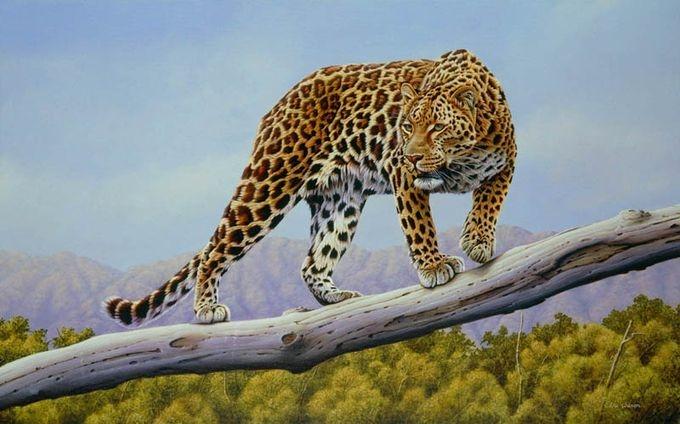 животные в картинах художников Эрик Уилсон 7 (680x424, 163Kb)