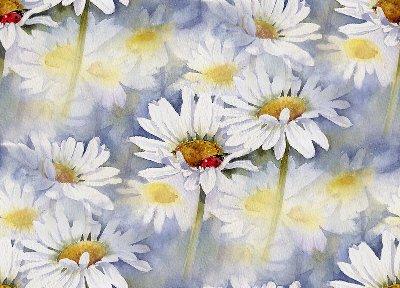 4700719_daisy63 (400x288, 37Kb)