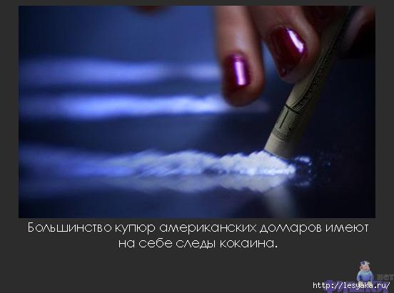 3925073_7fbad63320 (552x411, 93Kb)