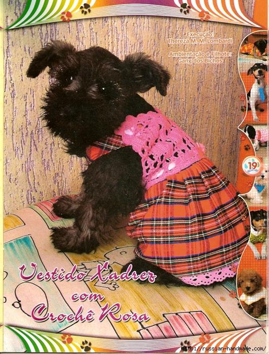 Вязалки для собачек. Журнал (15) (532x700, 423Kb)