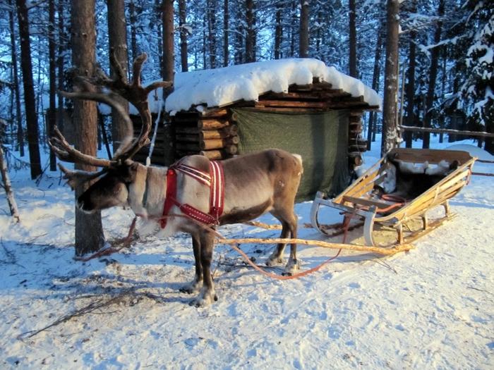 Отдых в Финляндии (700x525, 344Kb)