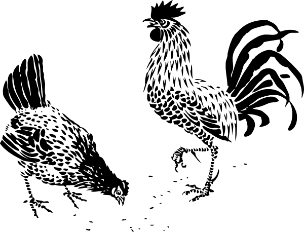11970950021084409896johnny_automatic_hen_and_rooster.svg.hi (600x458, 69Kb)