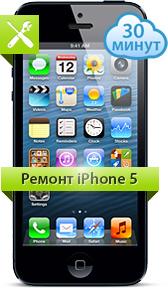 iphone5_verh (168x288, 44Kb)