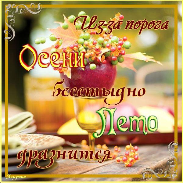 4975968_YDA15Po_0fI (600x600, 109Kb)