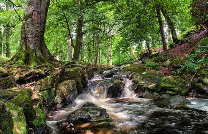 01 CLoghleagh Falls 270612 (700x451, 340Kb)